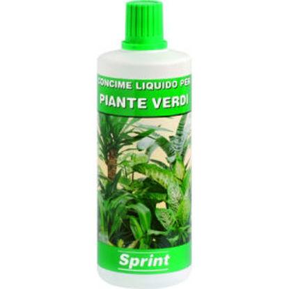Immagine di Concime liquido per piante verdi , flacone 1000gr