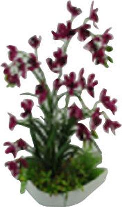 Immagine di Ciotola orchidea h.cm.65