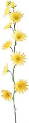 Immagine di Gambo di fiori piccoli gialli
