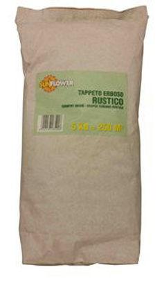 Immagine di miscuglio rustico:  sementi per prato alta resistenza all'usura, rapido sviluppo, facile manutenzione, soleombra kg.5