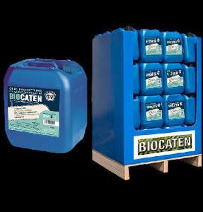 Immagine di Biocatene olio lubrificante per catene motosega biodegradabile, professionale lt.2