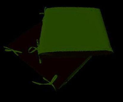 Immagine di cuscino per sedia, dimensioni cm.40x40 spessore cm.4, colore double face green/dover